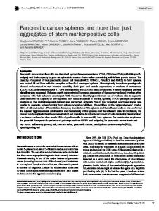 Pancreatic cancer spheres are more than just aggregates of stem marker-positive cells