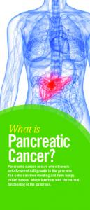 Pancreatic Cancer? What is