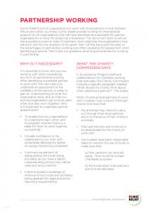 PARTNERSHIP WORKING WHY IS IT NECESSARY? WHAT THE CHARITY COMMISSION SAYS