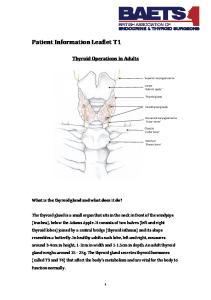 Patient Information Leaflet T1