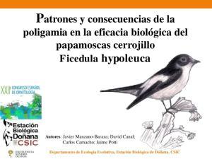 Patrones y consecuencias de la poligamia en la eficacia biológica del papamoscas cerrojillo Ficedula hypoleuca