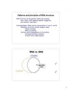 Patterns and principles of RNA structure