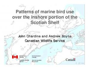 Patterns of marine bird use over the inshore portion of the Scotian Shelf