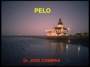 PELO. Dr. JOSE CAMBRIA