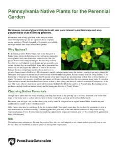 Pennsylvania Native Plants for the Perennial Garden