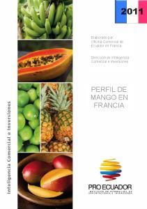 PERFIL DE MANGO EN FRANCIA