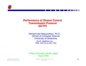 Performance of Stream Control Transmission Protocol (SCTP)