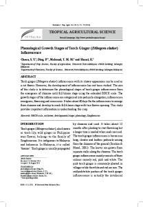 Phenological Growth Stages of Torch Ginger (Etlingera elatior) Inflorescence