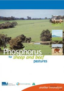 Phosphorus. sheep and beef. pastures. for