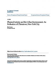 Physical Activity and the Urban Environment: An Evaluation of Chinatown, New York City