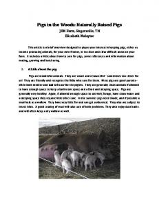 Pigs in the Woods: Naturally Raised Pigs