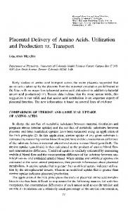 Placental Delivery of Amino Acids. Utilization and Production vs. Transport