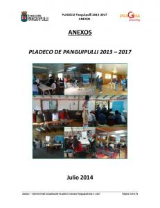 PLADECO Panguipulli ANEXOS ANEXOS PLADECO DE PANGUIPULLI Julio 2014
