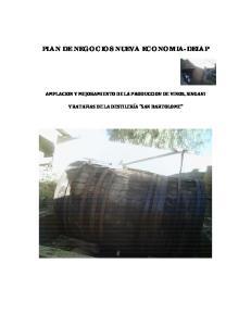 PLAN DE NEGOCIOS NUEVA ECONOMIA-DELAP