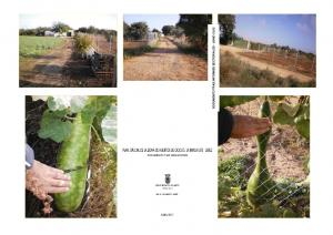 Plan Especial de la Zona de Huertos de Ocio de La Barca Este - Jerez - Documento tras Informes Sectoriales - Junio 2012