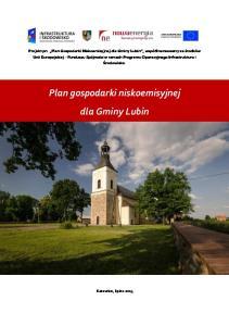 Plan gospodarki niskoemisyjnej dla Gminy Lubin