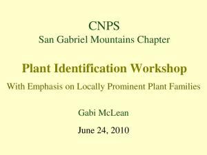 Plant Identification Workshop
