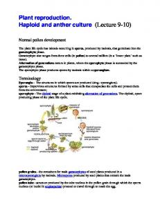 Plant reproduction. Haploid and anther culture (Lecture 9-10)