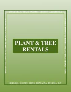 PLANT & TREE RENTALS