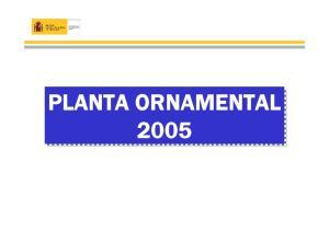PLANTA ORNAMENTAL 2005