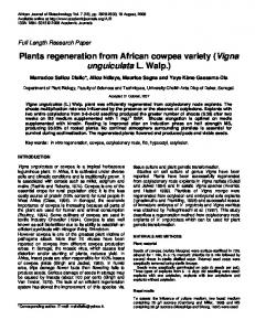 Plants regeneration from African cowpea variety (Vigna unguiculata L. Walp.)