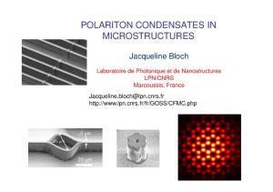 POLARITON CONDENSATES IN MICROSTRUCTURES