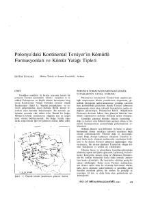 Polonya'daki Kontinental Tersiyer'in Kömürlü Formasyonları ve Kömür Yatağı Tipleri