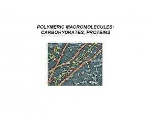 POLYMERIC MACROMOLECULES: CARBOHYDRATES, PROTEINS