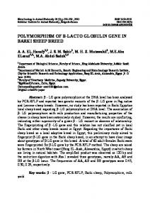 POLYMORPHISM OF Β-LACTO GLOBULIN GENE IN BARKI SHEEP BREED