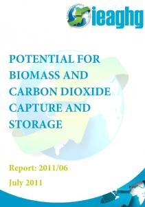 POTENTIAL FOR BIOMASS AND CARBON DIOXIDE CAPTURE AND STORAGE