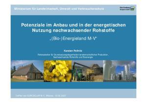 Potenziale im Anbau und in der energetischen Nutzung nachwachsender Rohstoffe (Bio-)Energieland M-V