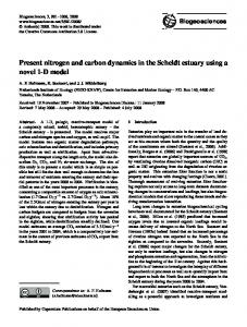 Present nitrogen and carbon dynamics in the Scheldt estuary using a novel 1-D model