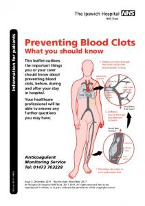Preventing Blood Clots What you should know
