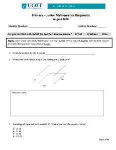 Primary Junior Mathematics Diagnostic August 2009
