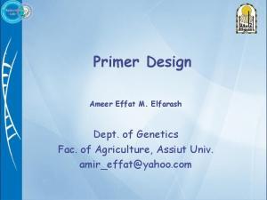 Primer Design Ameer Effat M. Elfarash