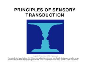 PRINCIPLES OF SENSORY TRANSDUCTION