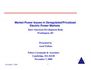 Privatized Electric Power Markets