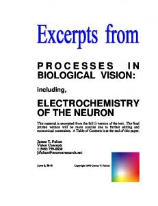 PROCESSES IN BIOLOGICAL VISION: ELECTROCHEMISTRY OF THE NEURON