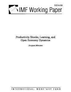 Productivity Shocks, Learning, and Open Economy Dynamics
