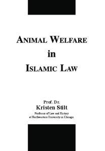 Prof. Dr. Kristen Stilt