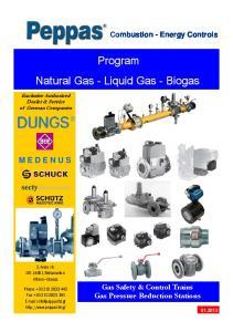 Program Natural Gas - Liquid Gas - Biogas