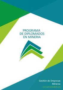 PROGRAMA DE DIPLOMADOS EN MINERIA