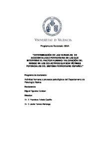 Programa de Doctorado: 300A