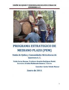 PROGRAMA ESTRATEGICO DE MEDIANO PLAZO (PEM)