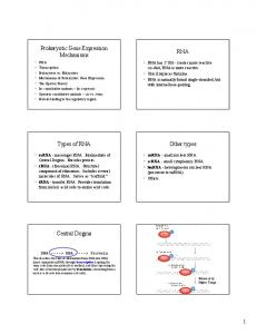Prokaryotic Gene Expression Mechanisms RNA. Types of RNA. Other types. Central Dogma