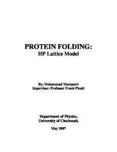 PROTEIN FOLDING: HP Lattice Model