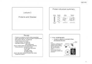 Protein structure summary Lecture 3