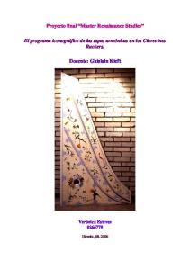 Proyecto final Master Renaissance Studies. El programa iconográfico de las tapas armónicas en los Clavecines Ruckers. Docente: Ghislain Kieft