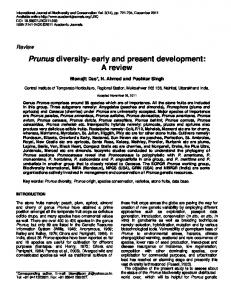 Prunus diversity- early and present development: A review