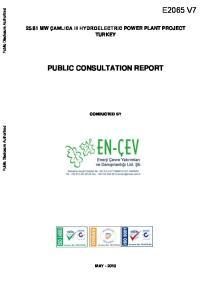 PUBLIC CONSULTATION REPORT